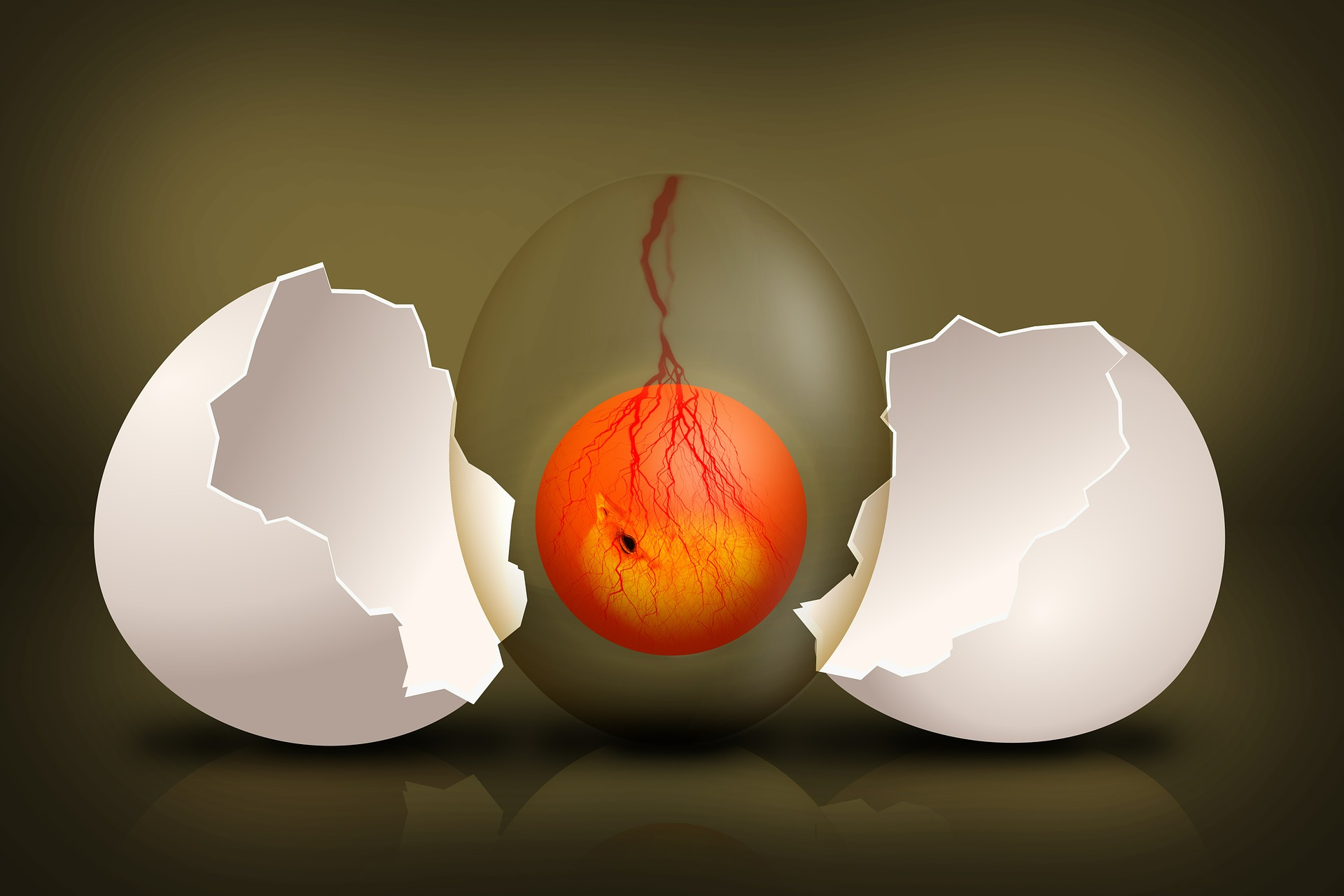 7 lucruri pe care nu le știați despre ouă